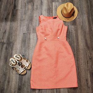 Tahari Coral with White Dress